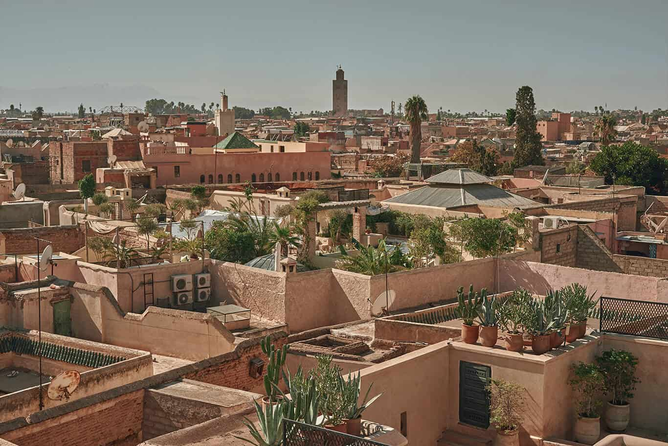 Vibrant Colors of Marrakech